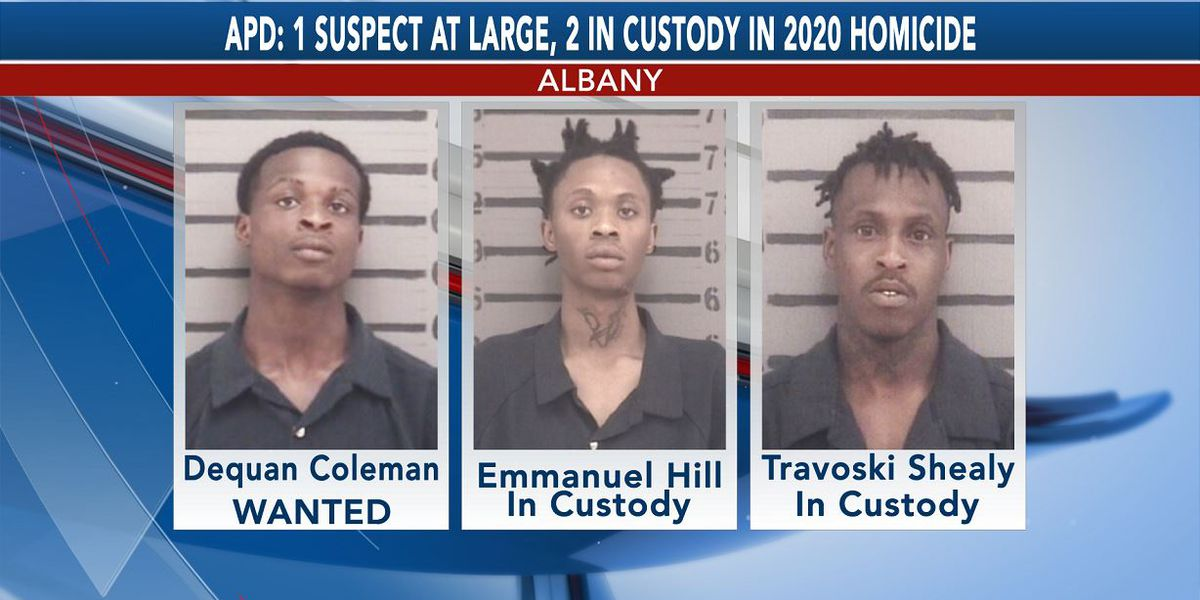 1 suspect at large, 2 in custody in July 2020 Albany homicide