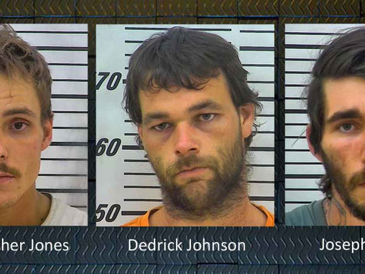 3 arrested in connection to Coffee Co. deaths