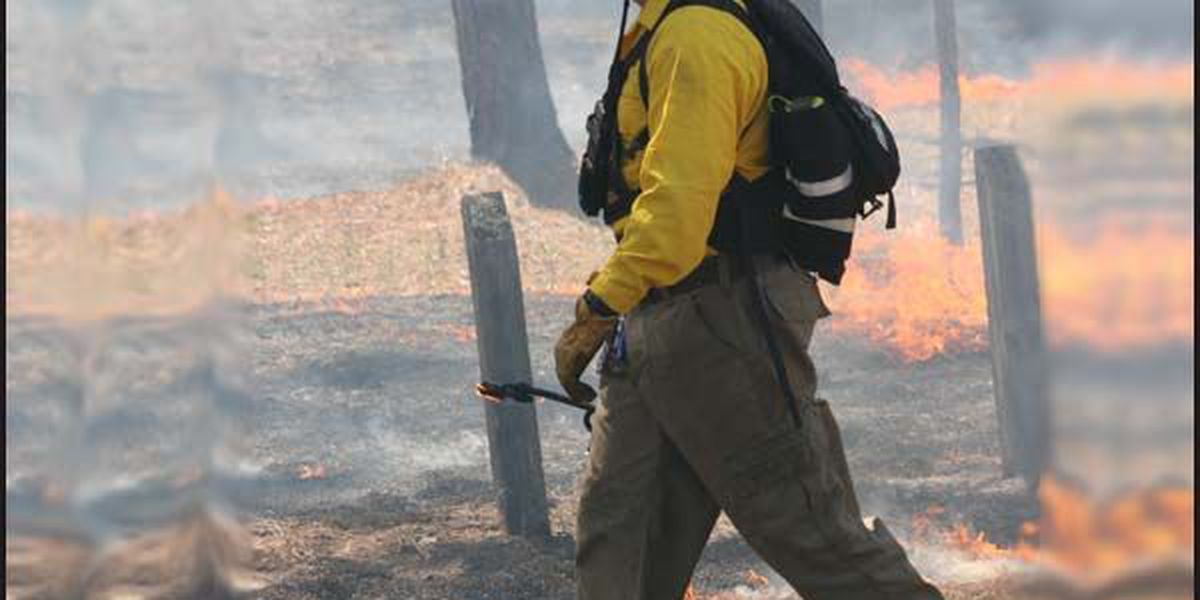 Controlled burns planned for Okefenokee Refuge