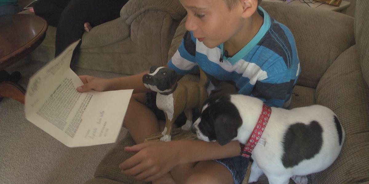 Community rallies behind boy whose dog was shot