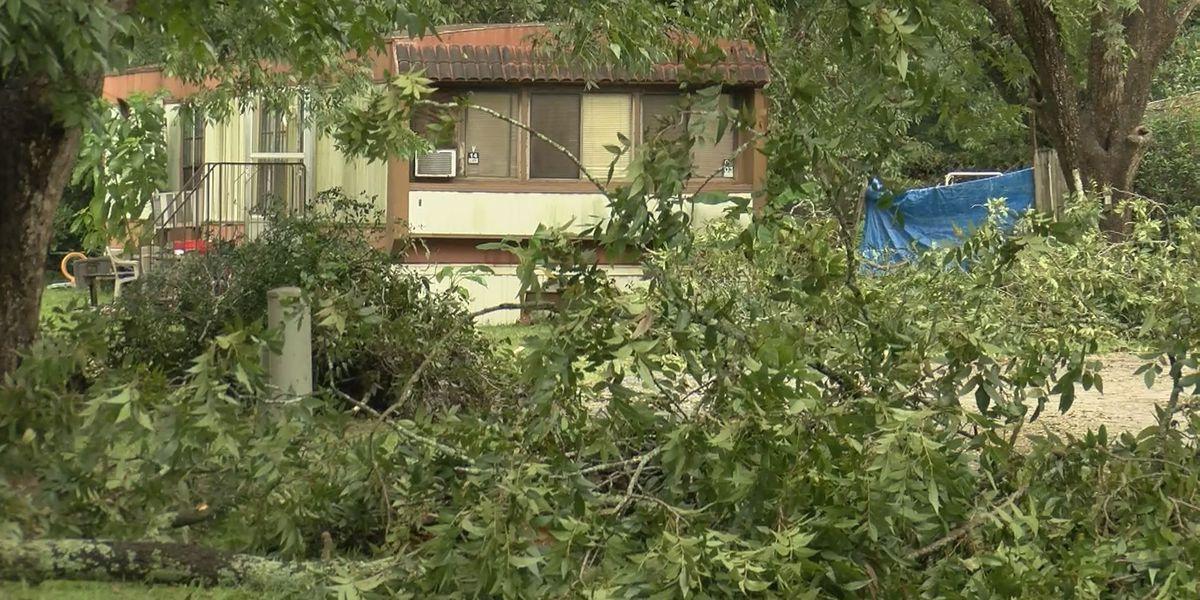Lee Co. residents asked to take storm debris to landfill