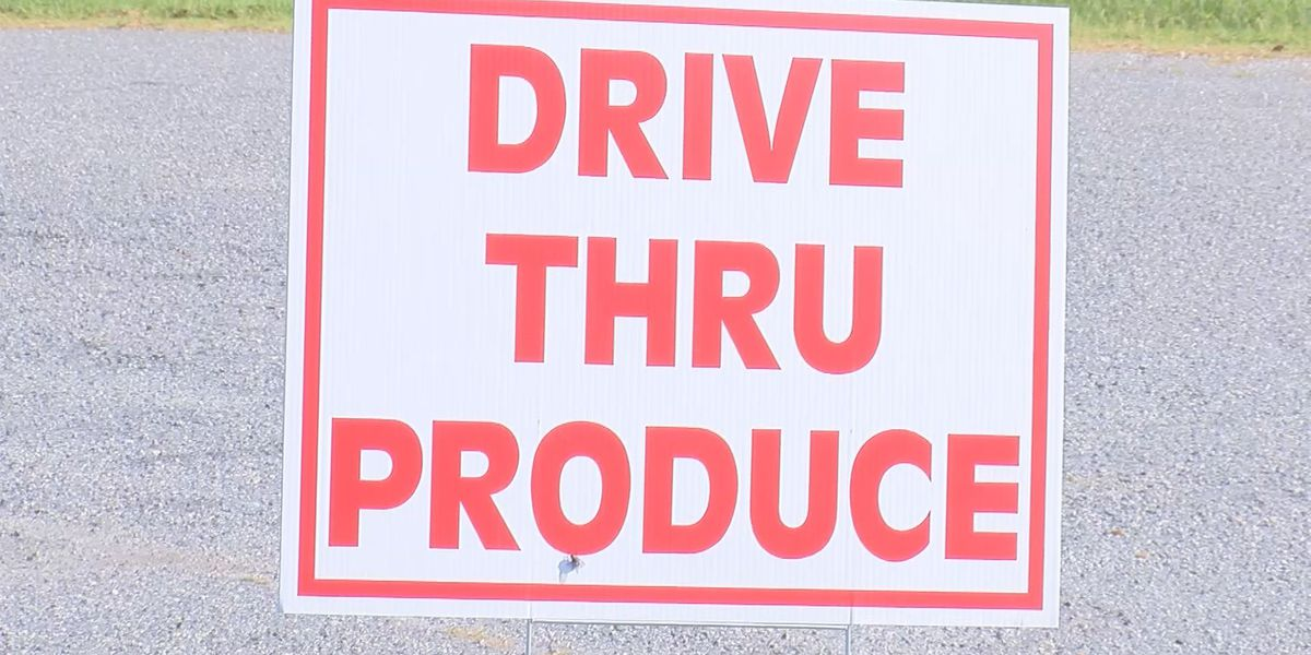 Albany business now serving fresh produce through drive-thru