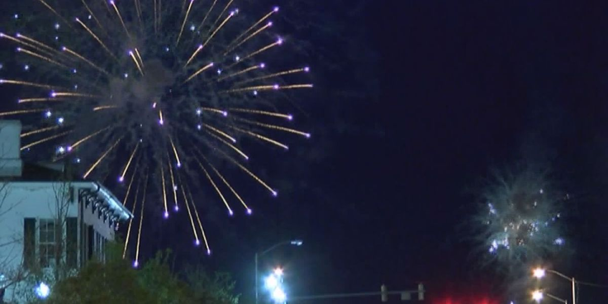 Albany cancels annual Fourth of July celebration