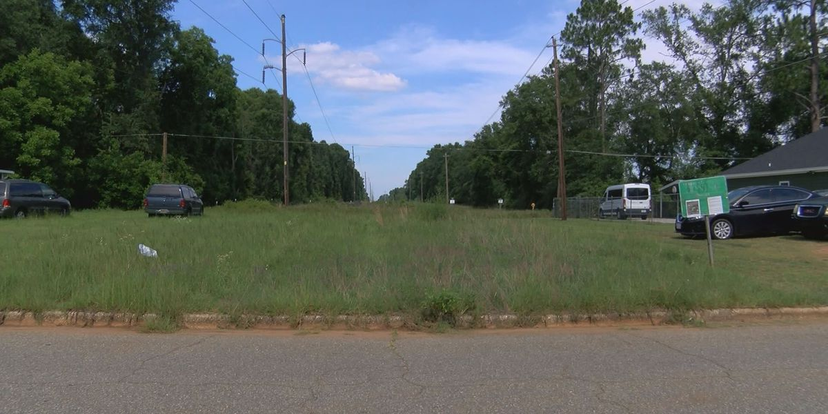 Albany commissioners deny solar farm project, residents relieved