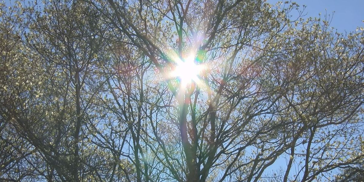 Growers brace for freezing temperatures