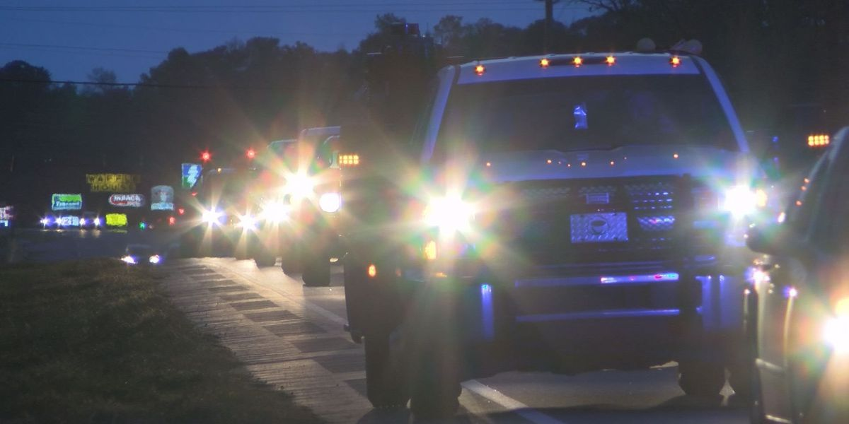 Lee County officials concerned by pedestrian dangers