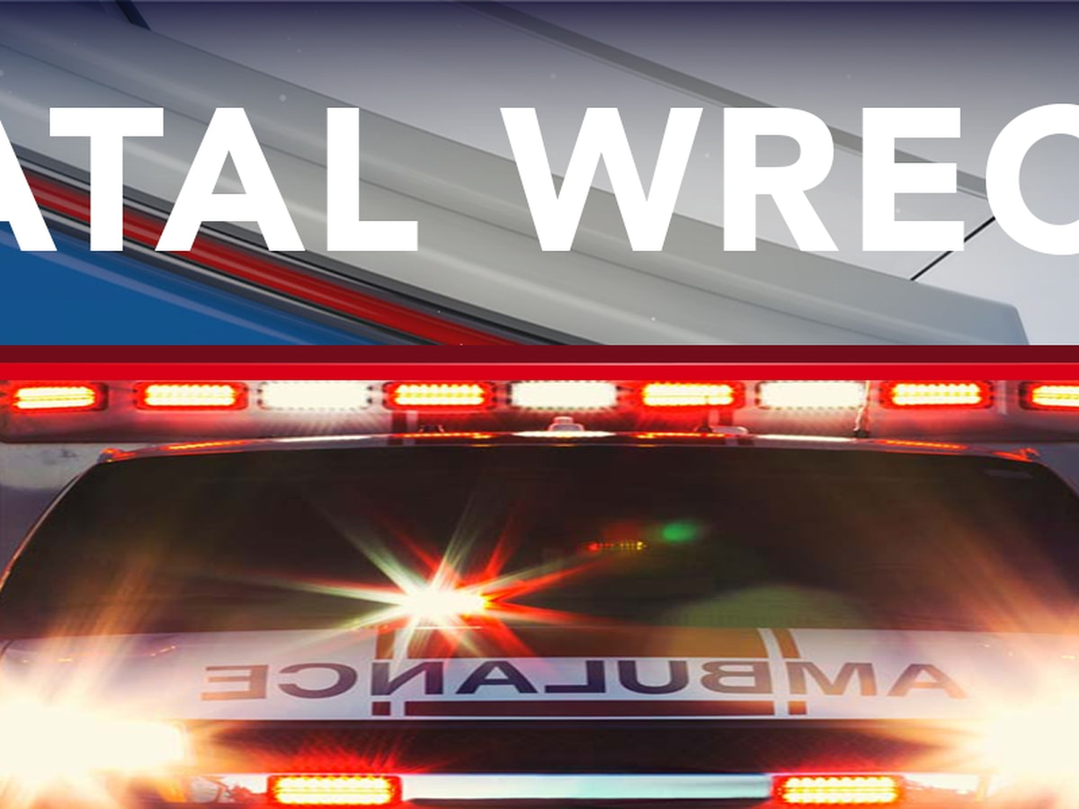 Two killed in rollover crash in Thomasville
