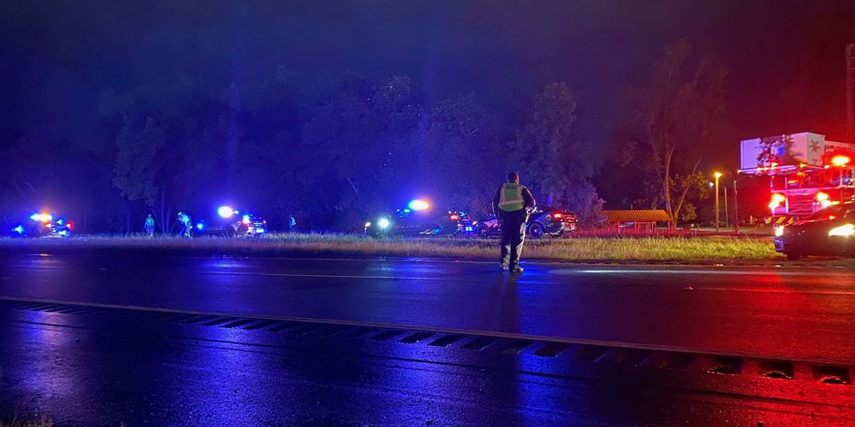 Pedestrian hit on Albany expressway