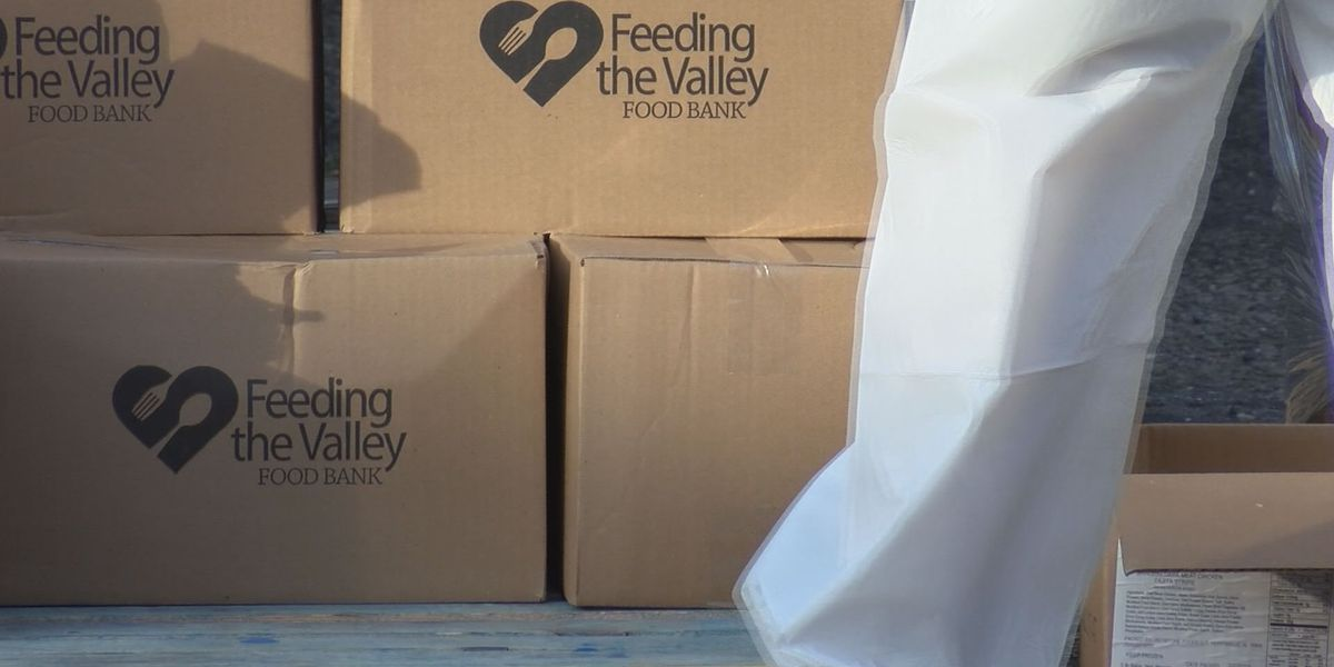 Albany food bank continues to provide regular food distributions