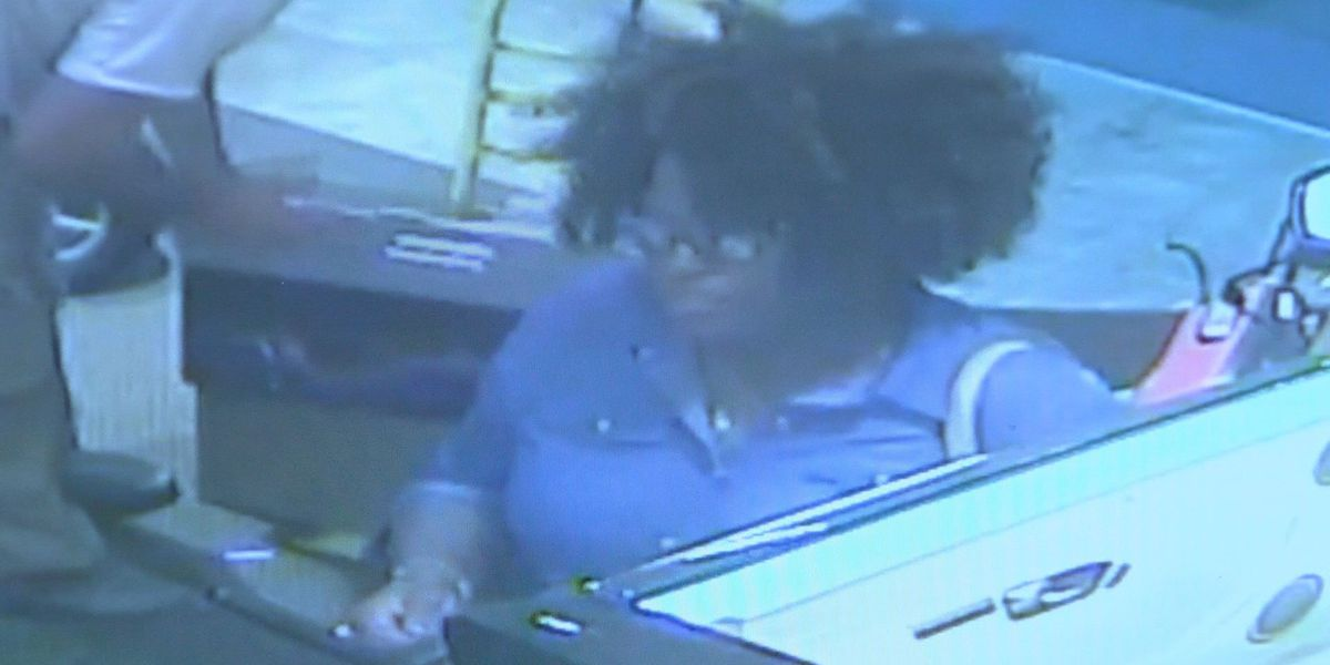 Albany police search for theft by taking suspect