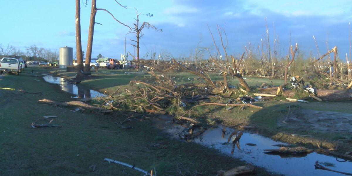 NWS confirms EF-2 and EF-3 tornadoes in SWGA