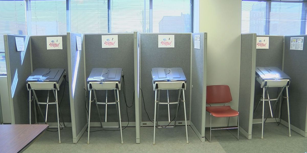 GA Senate bill would eliminate electronic voting
