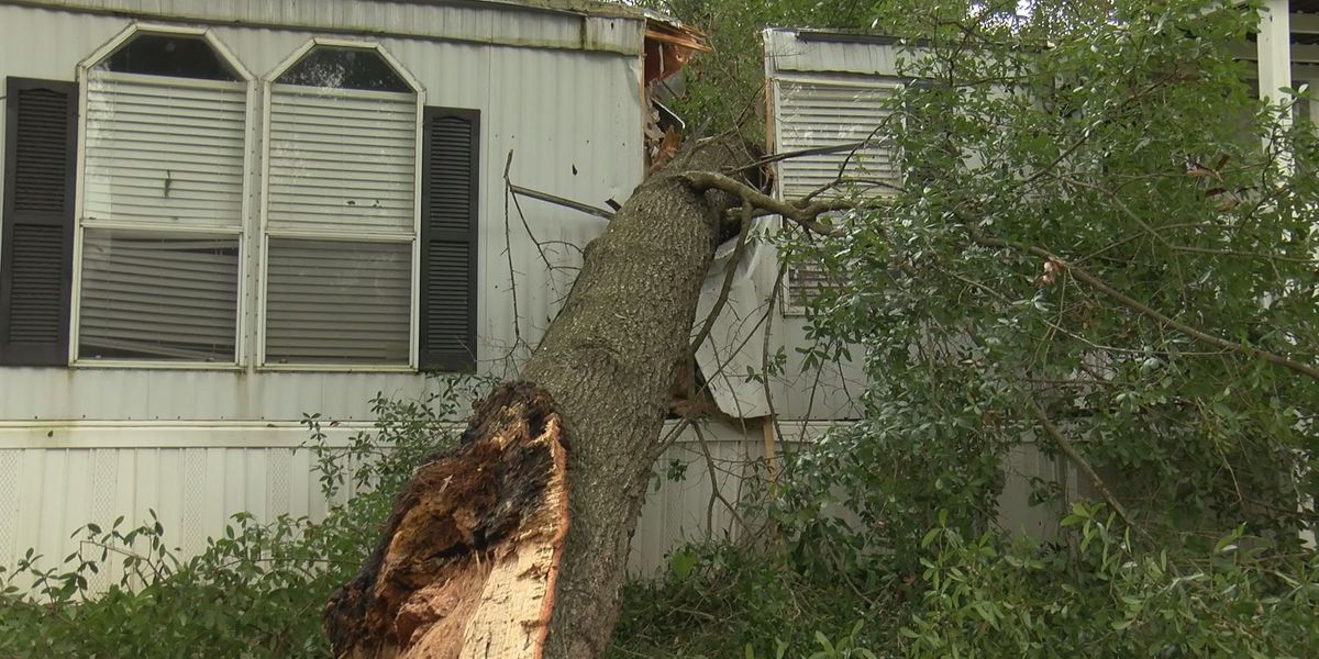 Time is running out for Lee Co. residents to clean up storm debris
