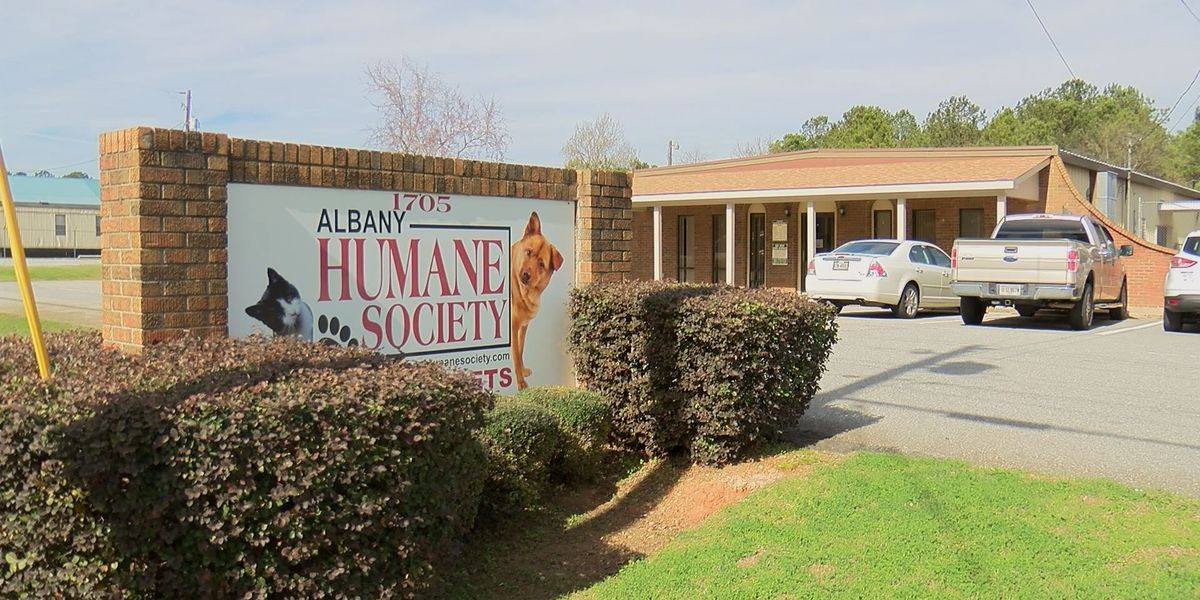 Albany Humane Society needs community's help with adoptions