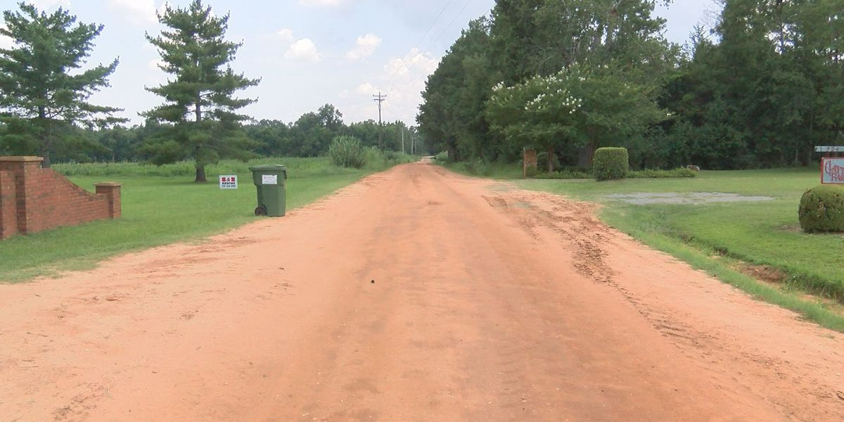'This road is actually dangerous': Lee Co. taxpayers want more roads fixed as T-SPLOST money rolls in