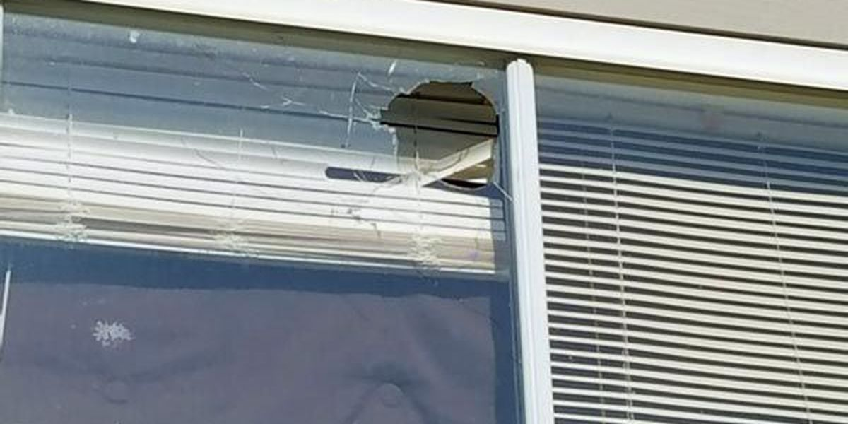 Bullets barely miss apartment residents