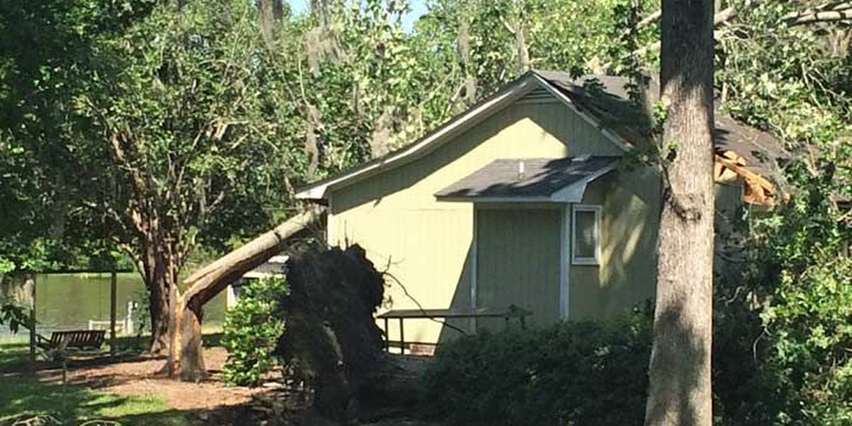 Strong storms rip through Crisp Co. neighborhood