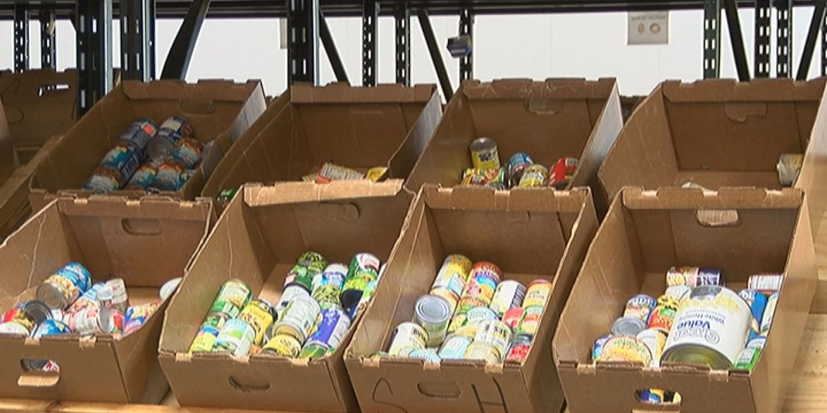 Second Harvest helped feed more families in 2016