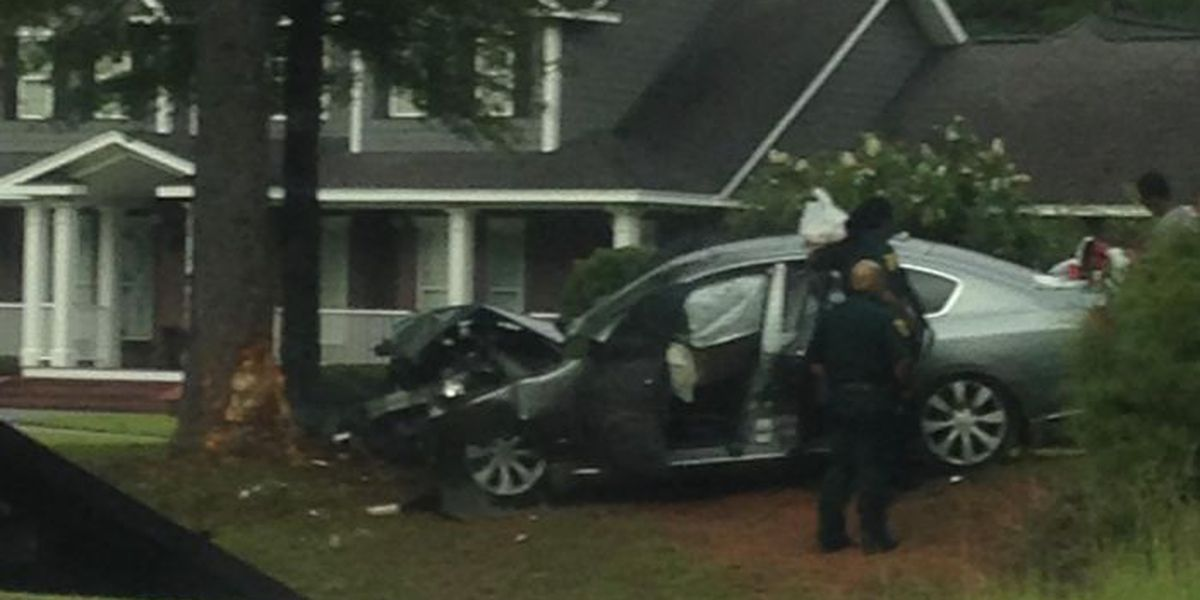 Car crashes into tree, driver taken to hospital