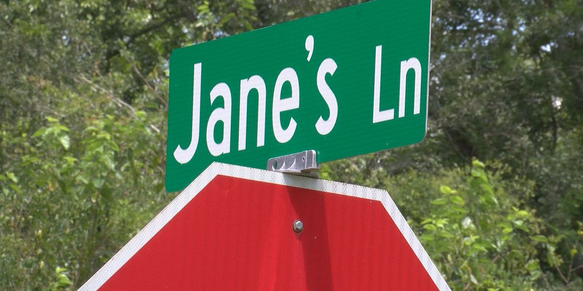 Jane's Lane homeowners voice their concerns at commission meeting