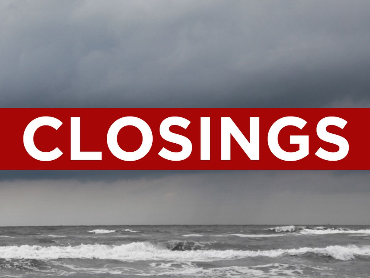 South Georgia school and business closings