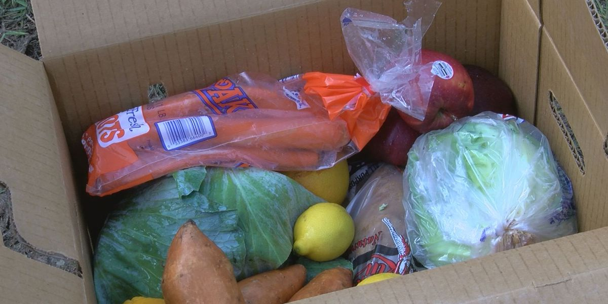 Moultrie Lions Club, Moultrie church holds Friday food giveaway