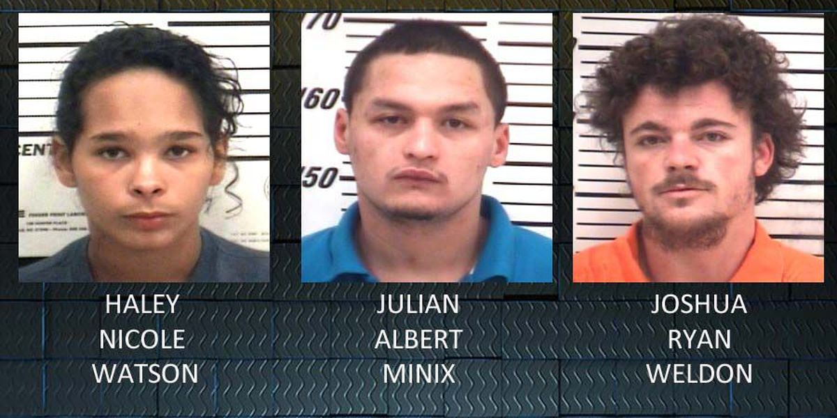 Three arrested for assault, drug possession in Coffee Co.
