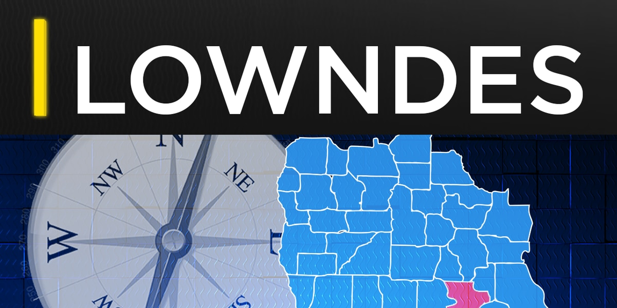 Lowndes County student struck by car