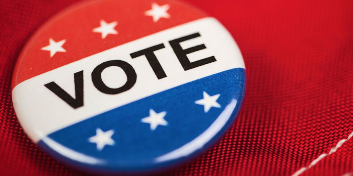 Early voting numbers in for Lee, Worth counties