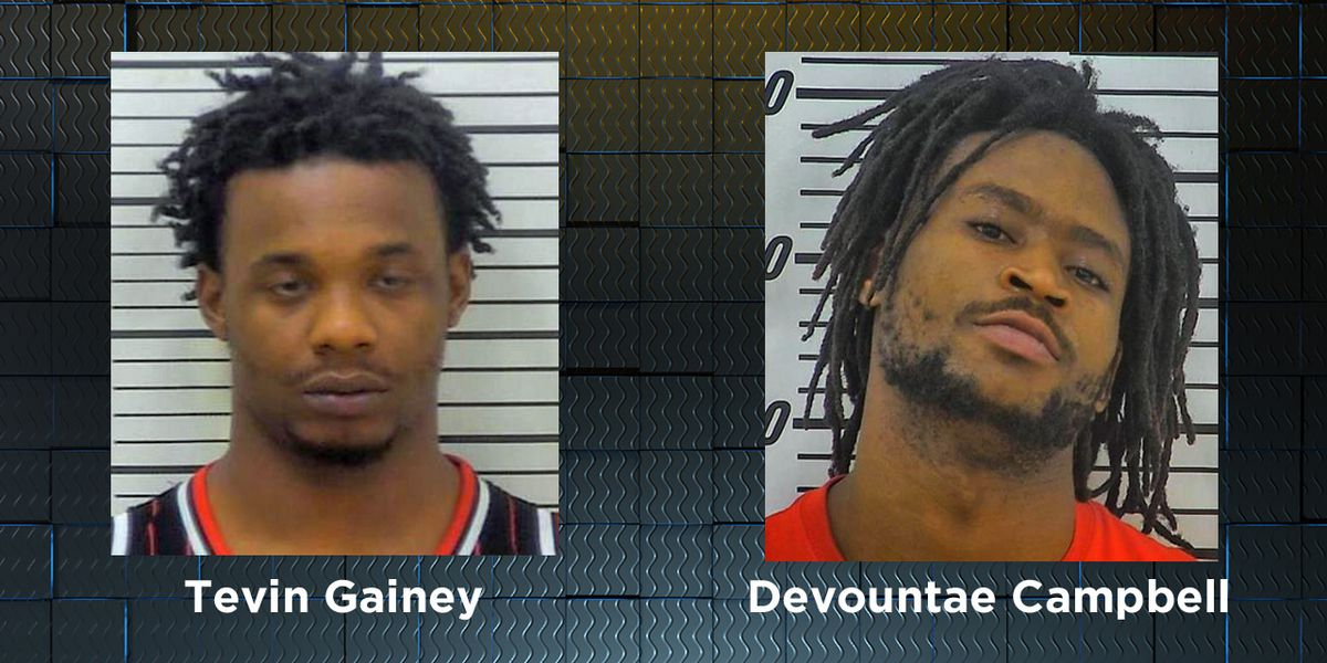 2 facing drug charges after Coffee Co. traffic stop