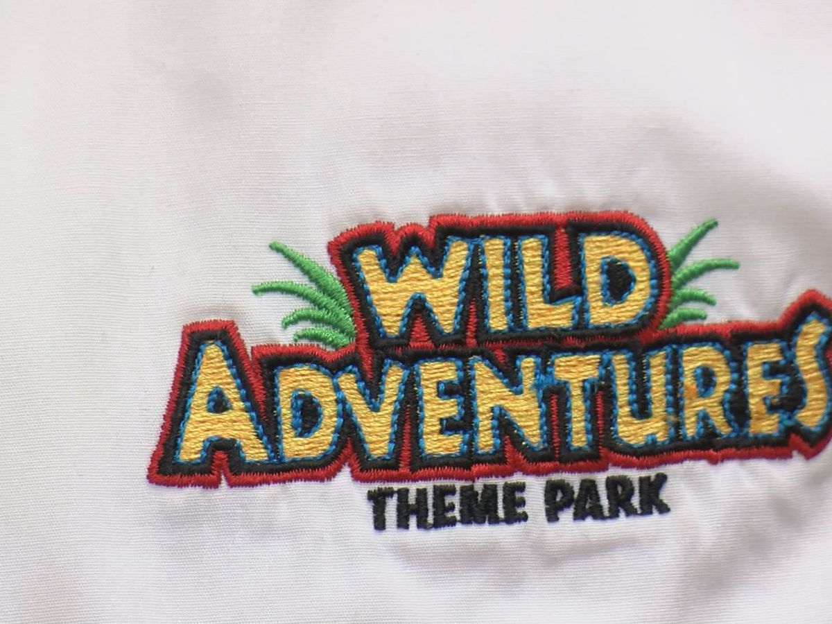 Wild Adventures adds hypnotist to summer fun
