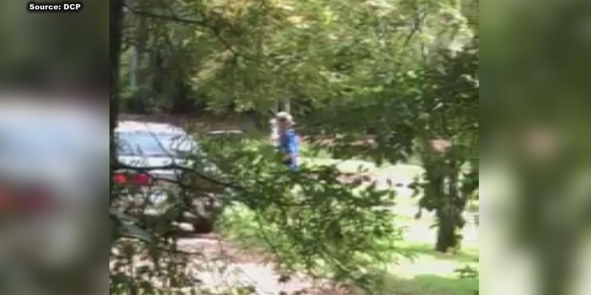 Caught on camera: Thief steals out of Dougherty Co. yard, gets away