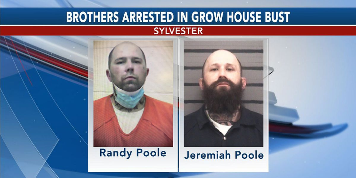 Brothers arrested in Sylvester marijuana grow house bust