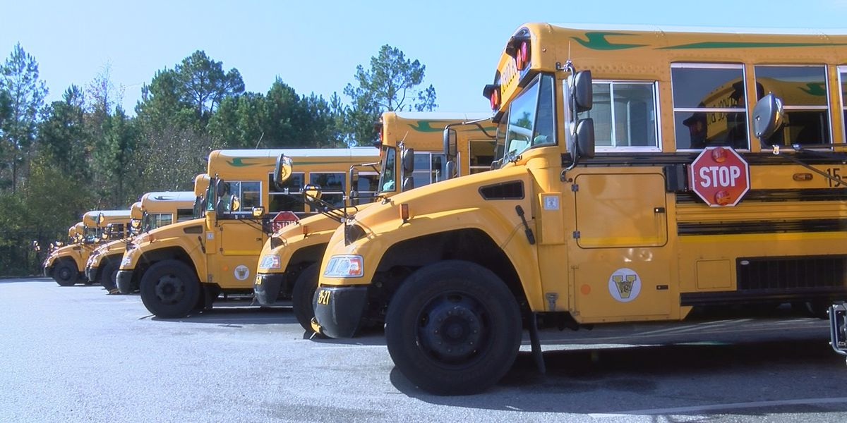 Schools face bus driver shortage