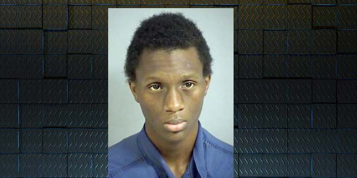 Homeowner holds Valdosta teen for police after burglary