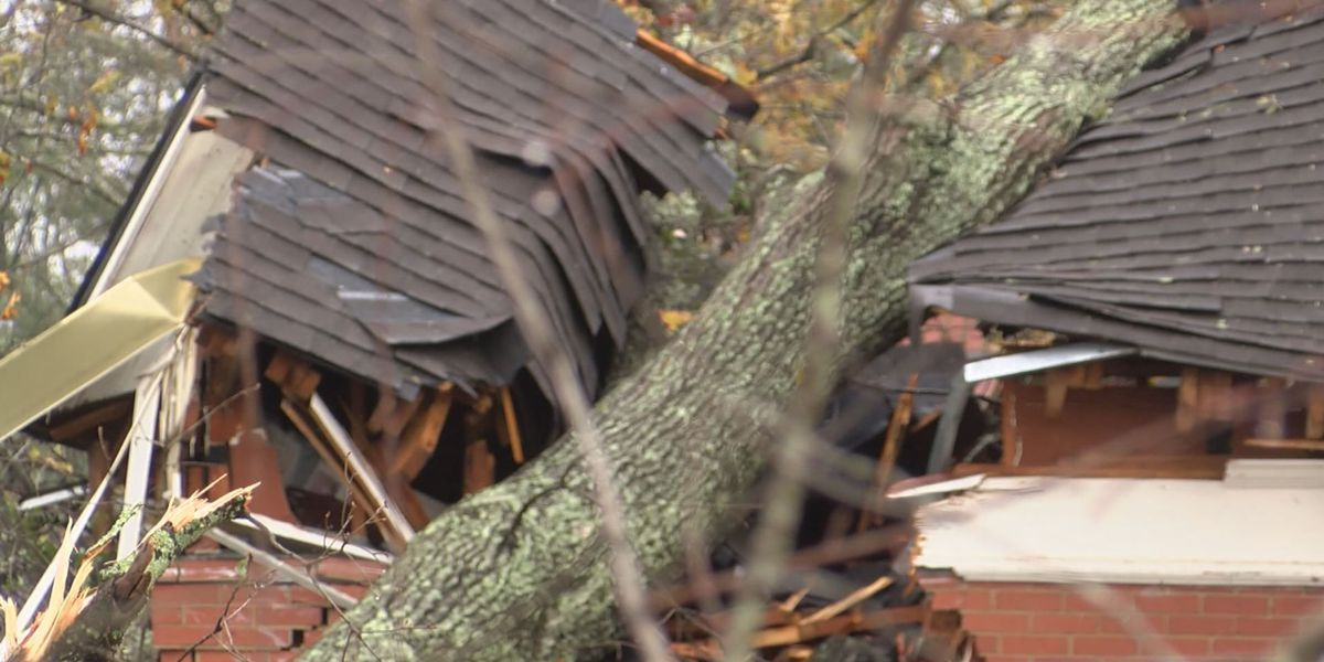 LIVE on TIG: Storm cleanup continues