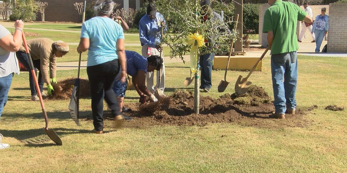 ATC celebrates Arbor Day
