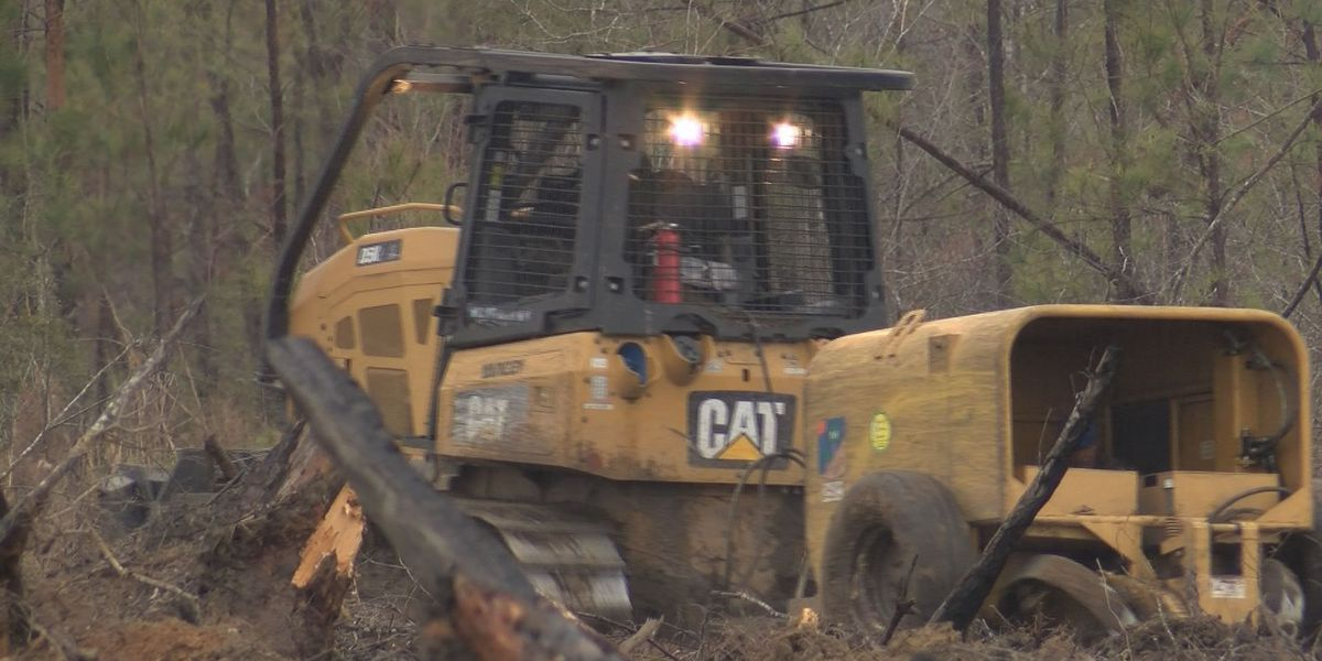 South GA company replants trees at Camp Osborn after storm damage