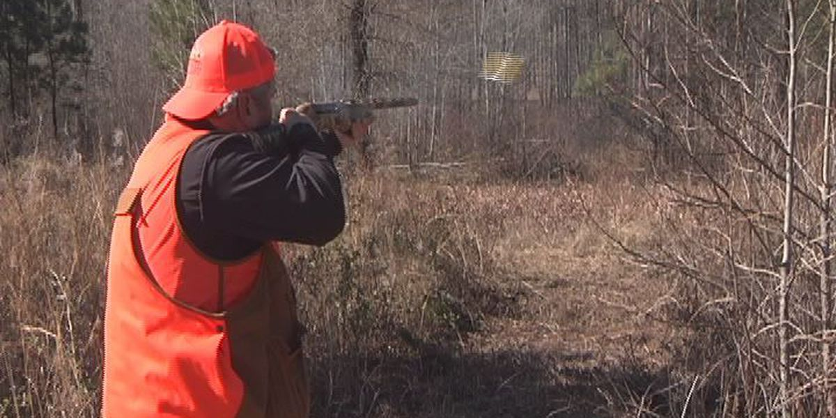 New organization, old traditions bolster South Georgia quail hunting