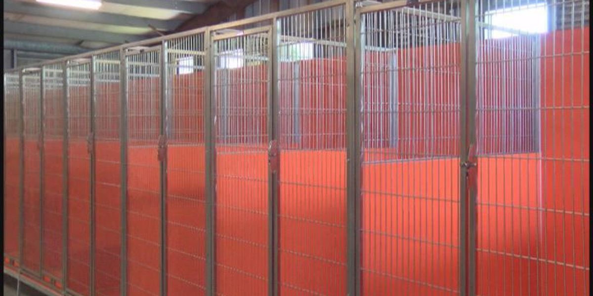New dog kennels installed at Thomas co. Humane Society