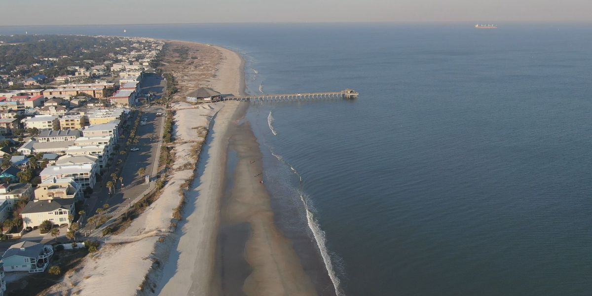 Conservation groups locked in legal fight over seismic surveys off Atlantic coast
