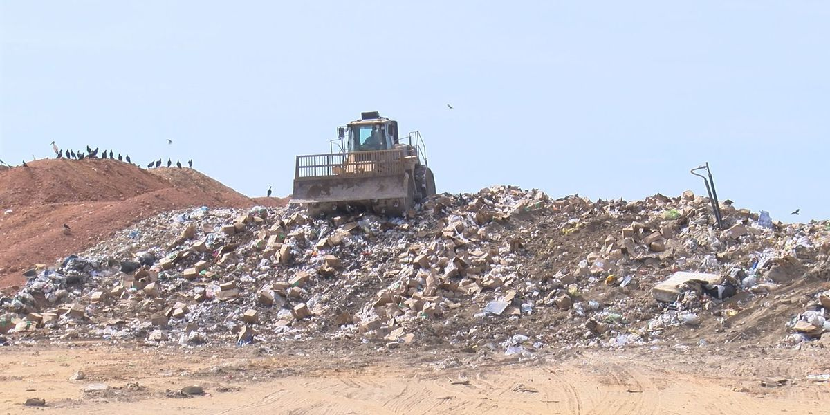 Dougherty Co. landfill needs to expand
