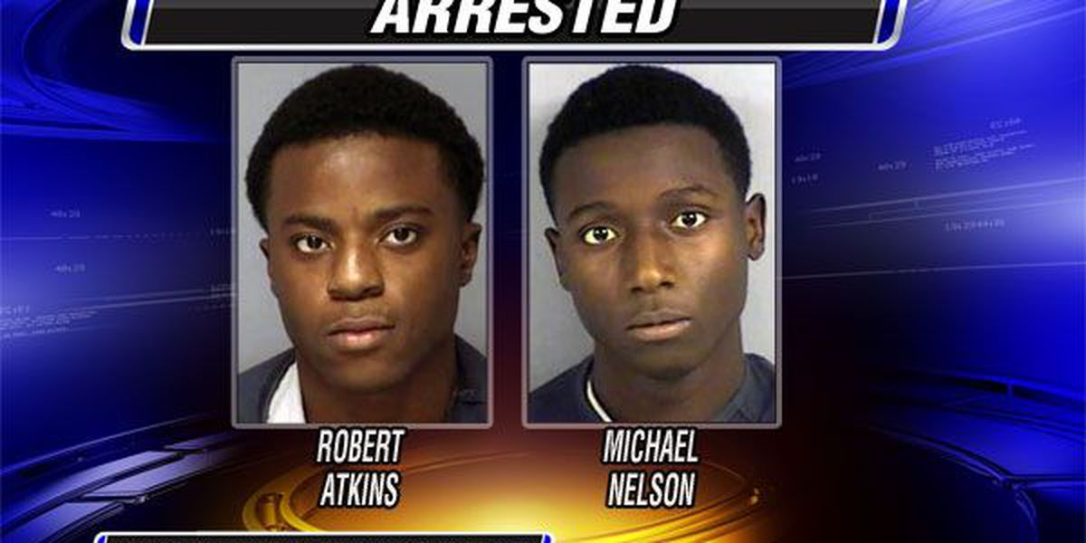 Theft arrests made in Lake Park