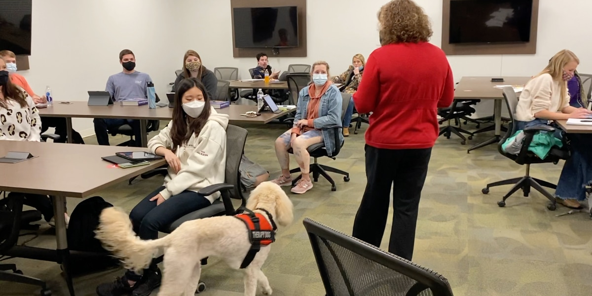 Meet Minnie: VSU therapy dog helps nursing students through challenging times