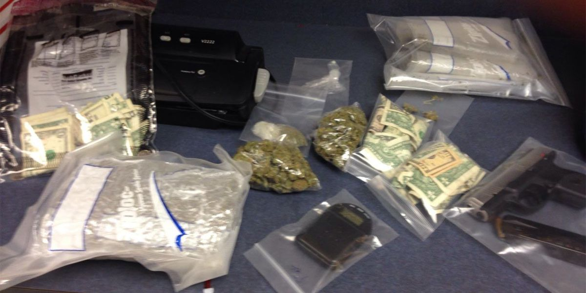Pound of pot seized in theft investigation