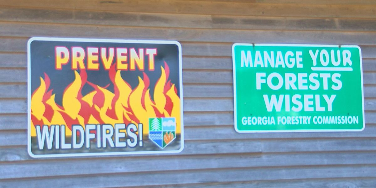 Hurricane debris, dry weather are keeping the Ga. Forestry Commission busy
