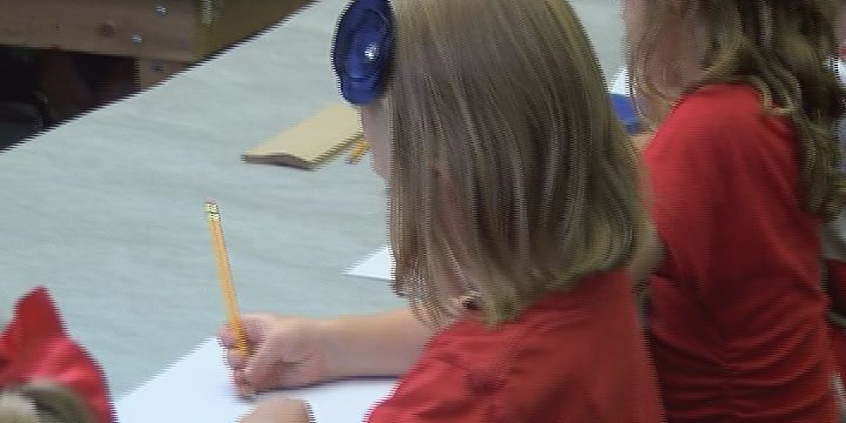 A Virtual Public Charter School visits the Albany Museum of Art