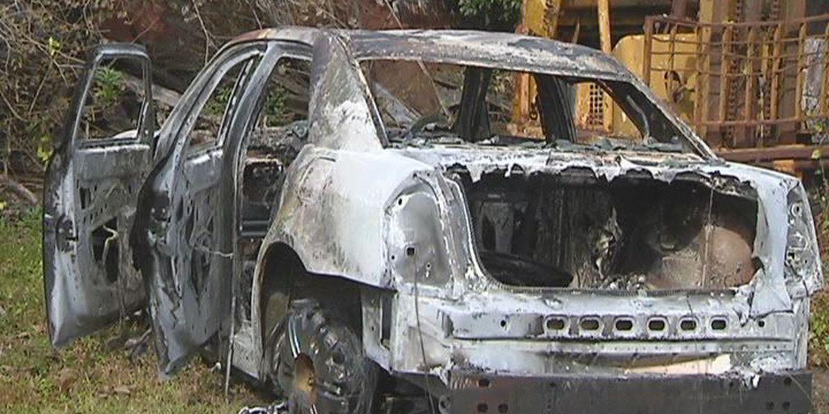 Albany car arson investigated