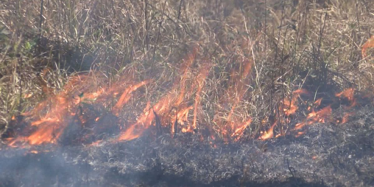 Fire officials warn about dry weather