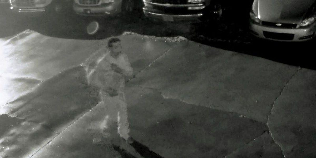 Surveillance video shows criminal in action